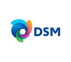 14 DSM